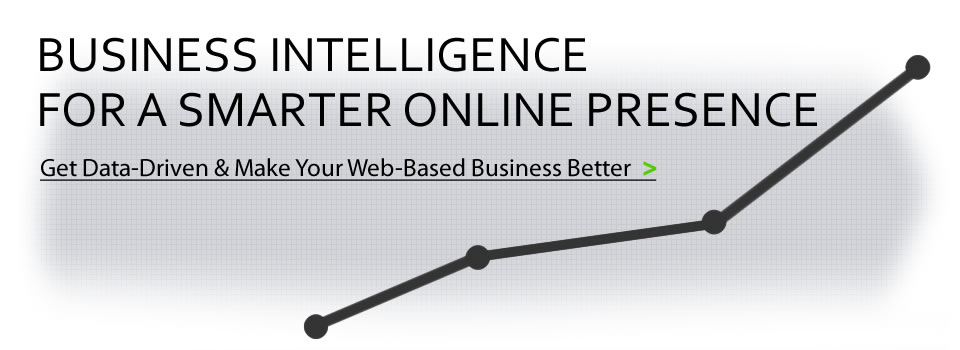 Business Intelligence for a Smarter Web Presence